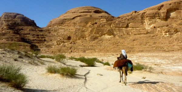 Bedouin Low Cost Safaris in Egyptian Desert.