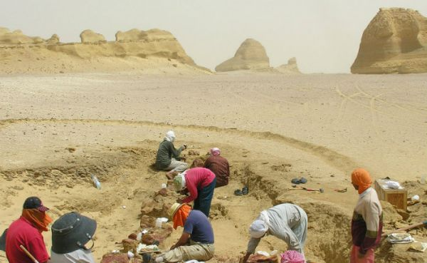 Al Fayoum Low Cost Touring, Egypt.
