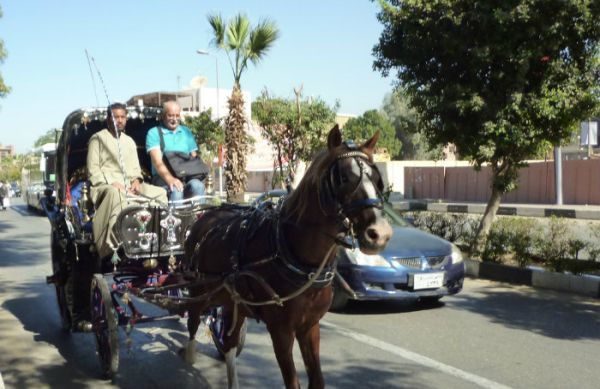 Travel To Luxor Amp Karnak Temples Road Trips From Aswan