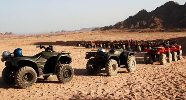 Quadrunning Budget Safari in Arabian Desert.