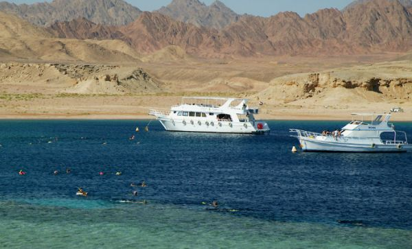 Red Sea Boat Trips
