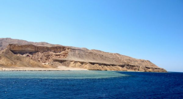Tiran Island Snorkeler, Red Sea Coast.