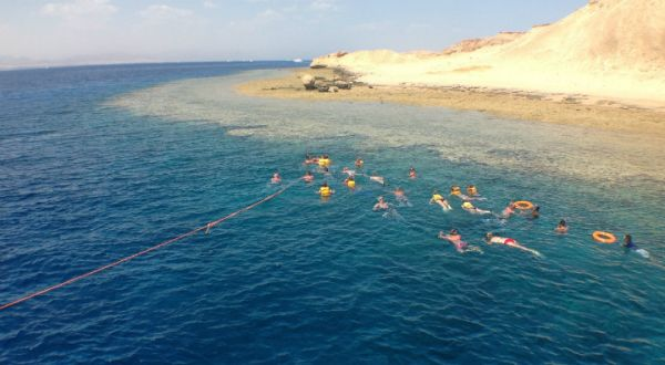 Tiran Island Swim, Red Sea Beach.