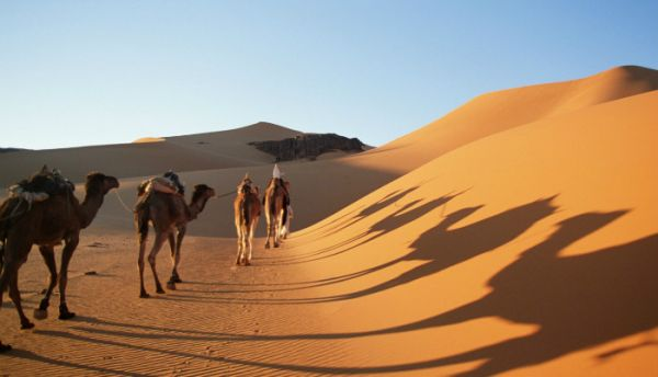 Adventure Vacation Offers in Egypt