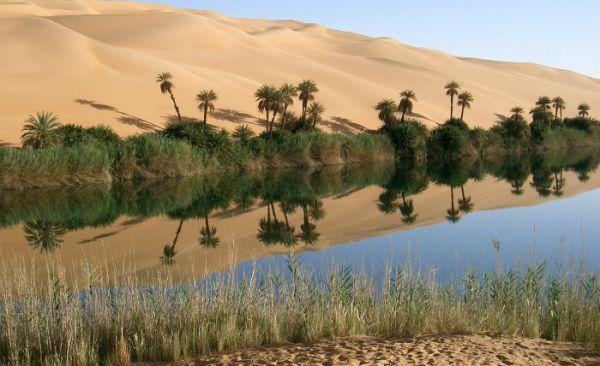 Egyptian West Desert Low Cost Adventure Trips.