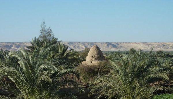Bahariya Oasis Cheap Desert Camping Touring
