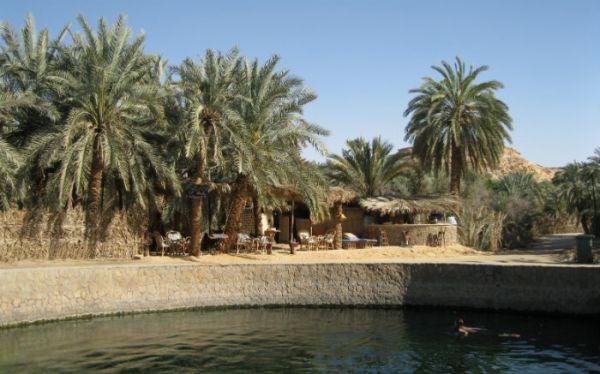 Siwa Oasis Discount Desert Camping Tripping