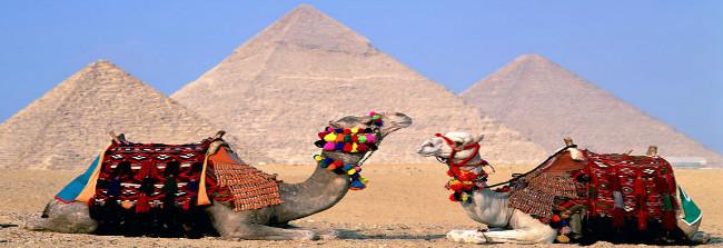 Egypt Honeymoon Trips