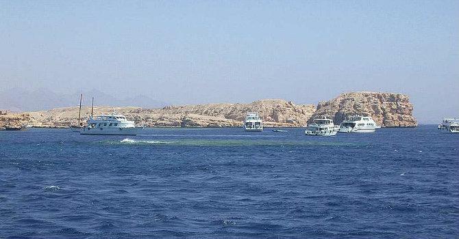Snorkeling Marsa Alam | Snorkeling at Satayh Dolphin Reef Marsa Alam
